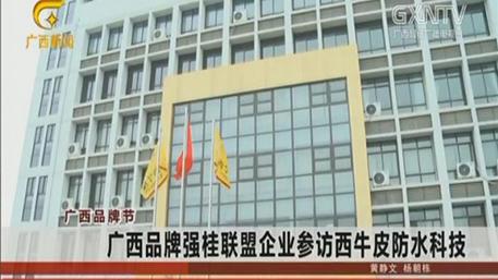 广西品牌强桂联盟企业参访西牛皮