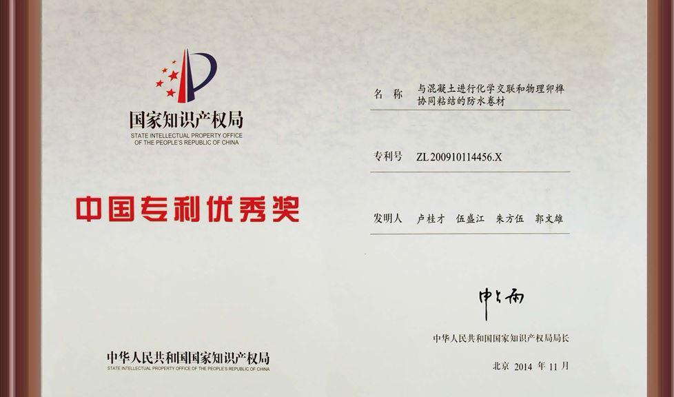【企业荣誉】广西壮族自治区党委书记彭清华为金雨伞颁发中国专利优秀奖